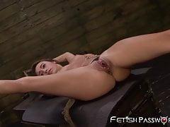 Marina Angel, petite et attachée, tendue par une queue de maledom