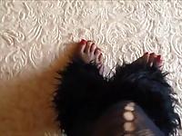 leggy pantyhose women