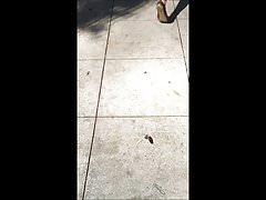 Candid - Bouncy ass under summer dress
