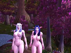 Elfes de la nuit de world of warcraft
