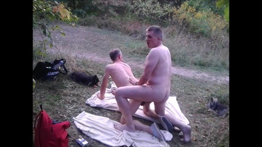 Ledeni gay porno