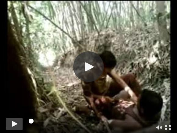 देसी जंगल सेक्स