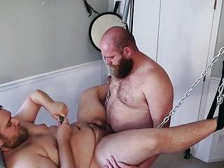 Chubby Bears in Sling