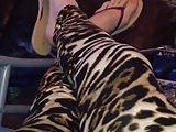 Cheetah Leggings And Thong Sandals Shoeplay